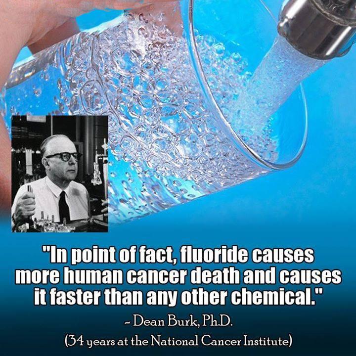 berkey water filter fluoride